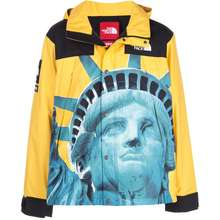 Supreme X The North Face Mountain Jacket Yellow